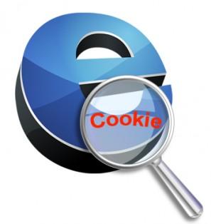 politica-cookies-mantenimiento-informatica-coruña-297x314